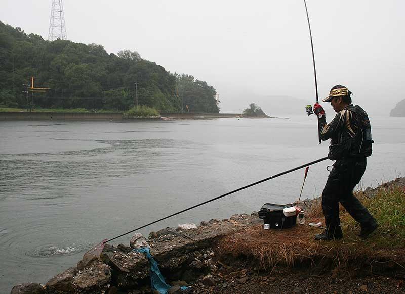 ジャパンカップクロダイ 釣り上げる大知