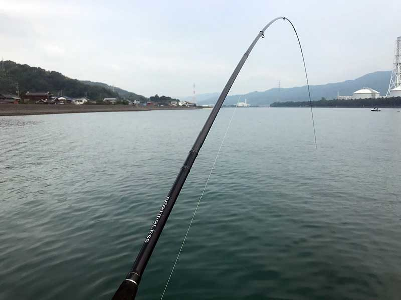 チヌ釣り 竿曲げ