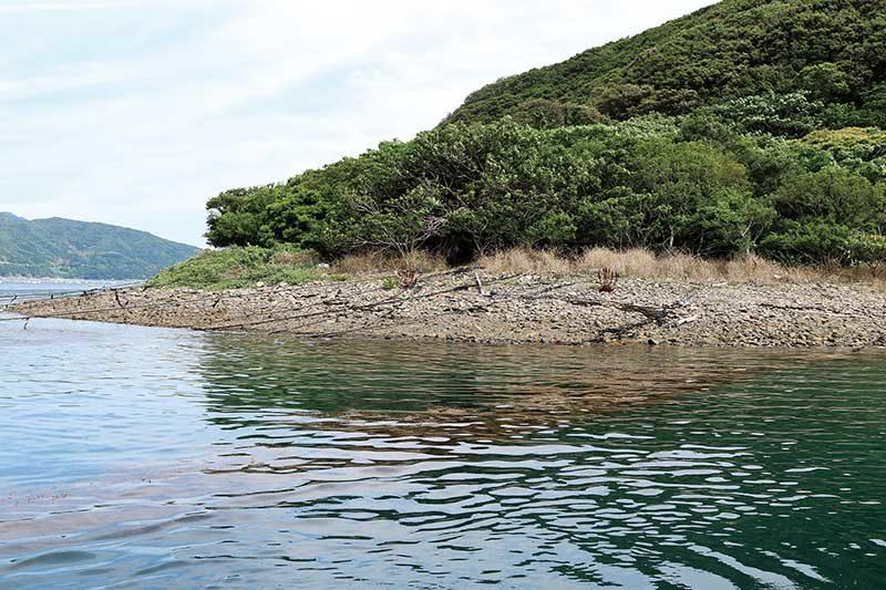 由良半島のゴロタ石