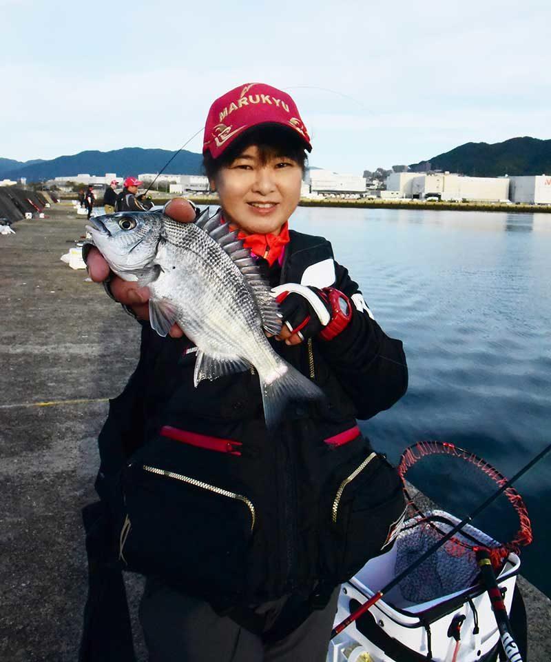 草津漁港でチヌを釣った