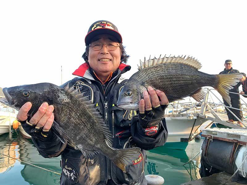 安浦沖のチヌ釣果